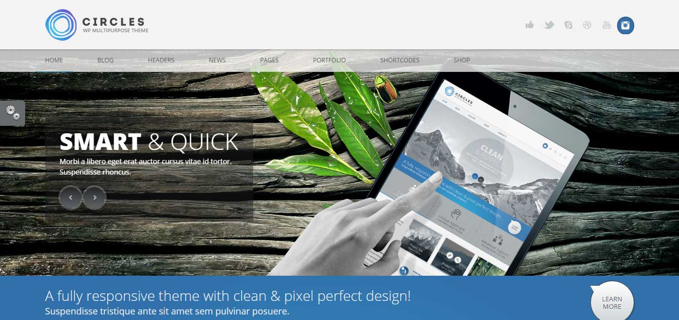 Circles - Responsive WordPress MultiPurpose Theme