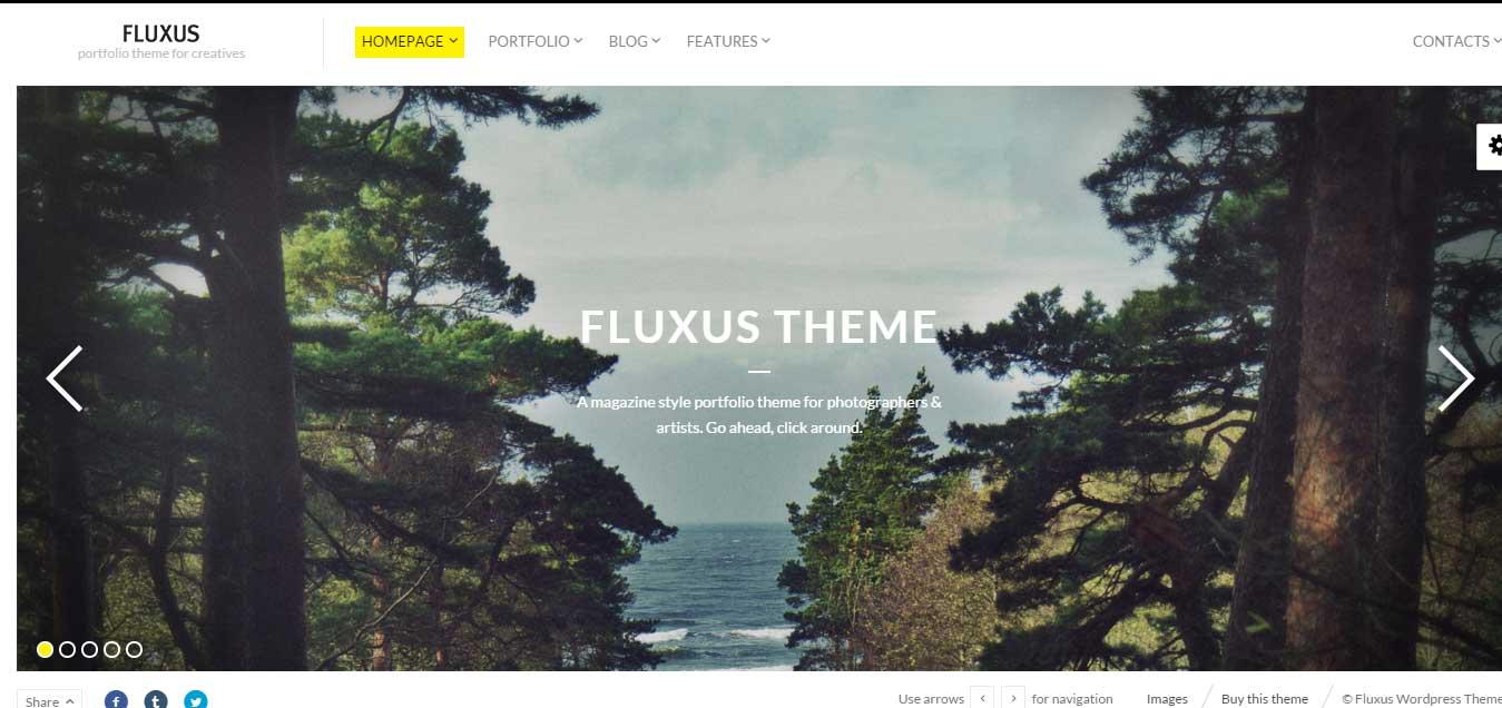 fluxus-portfolio-theme-for-creatives