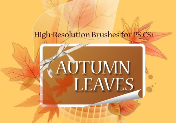 15 Hi-Res Autumn Leaves Photoshop Brushes