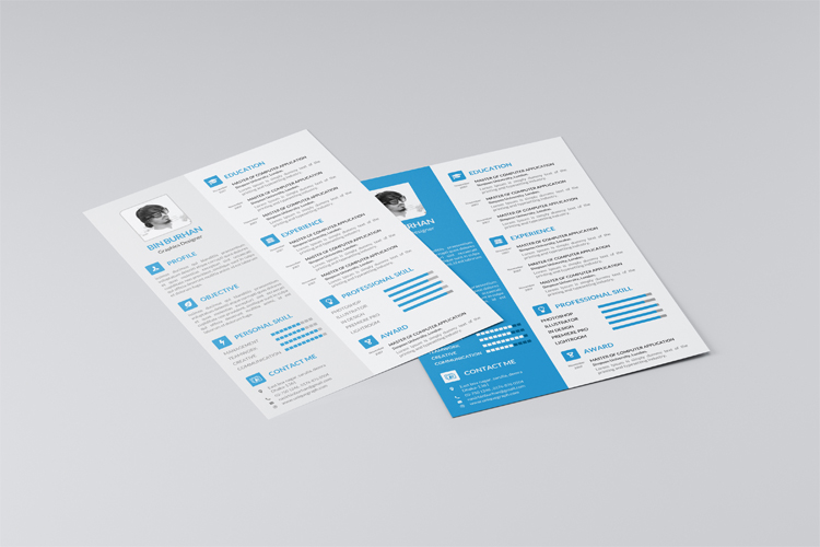 Free Simple Resume Template  Sample Resume And Free Resume Templates