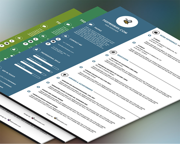 35 best free resume design templates themecot graphic designer resume template psd yelopaper Image collections