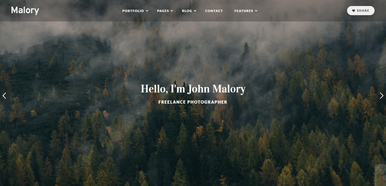 Malory - Material Photography WordPress Theme