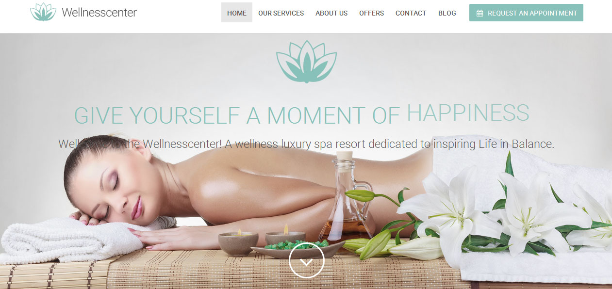 WellnessCenter - Nail Salon WordPress Themes