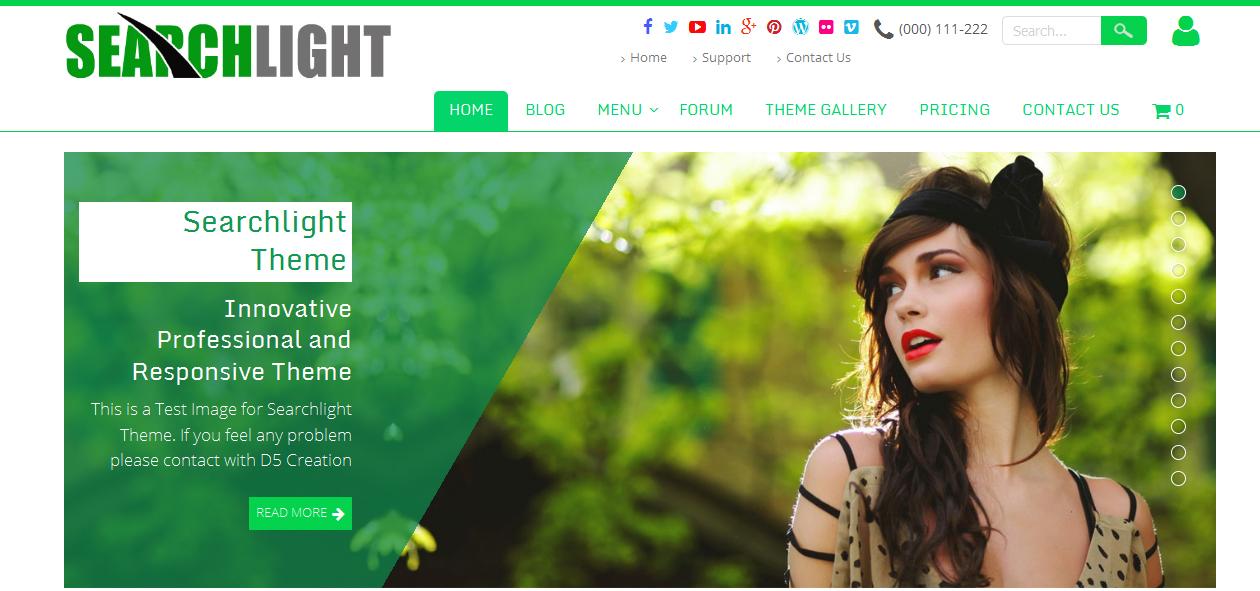 Searchlight - Artist WordPress Themes