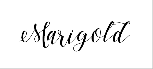 45 Modern Free Script Fonts For Designers 2018